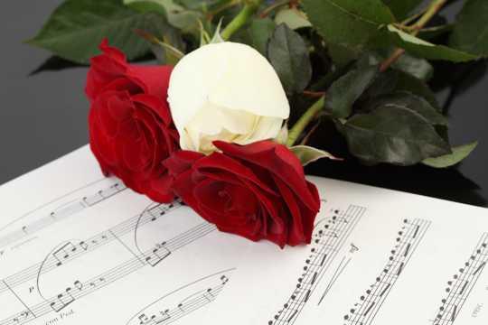 玫瑰花乐谱图片