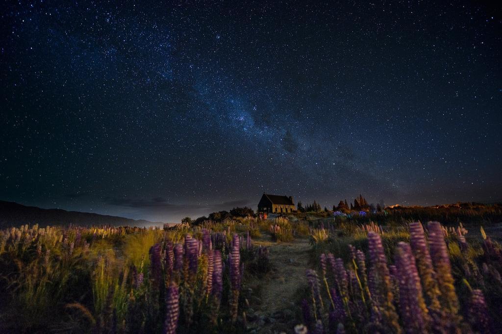 天空,新西兰,星星,夜晚