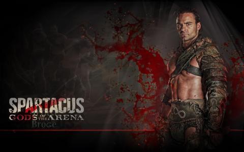 斯巴达克斯,系列,斯巴达克,沙和血,角斗士,战士,竞技场的神,甘尼克