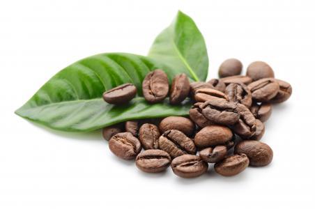 咖啡,谷物,叶子,白色背景