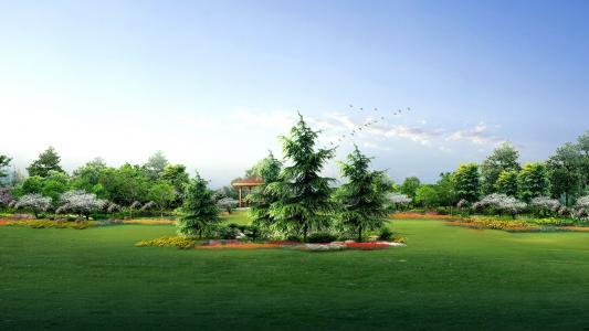 绿色,花园,壁纸