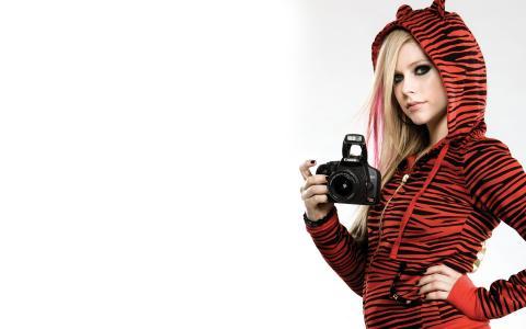 艾薇儿雪崩,歌手,音乐家,金发女郎,艾薇儿拉维涅,佳能