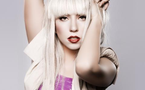 Lady Gaga,歌手,音乐家,肖像