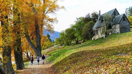 漫步于秋色下