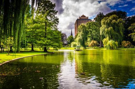 公园,房屋,树木,草地,果岭,池塘,鸭子
