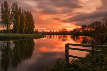 河,日落,树木,景观