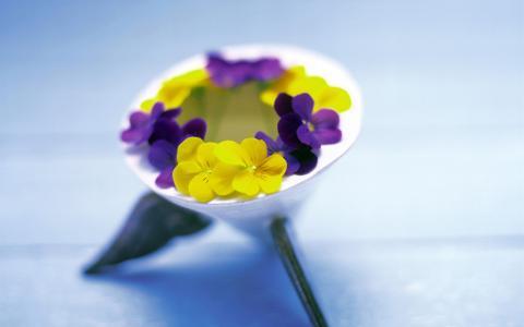 三色紫罗兰,鲜花