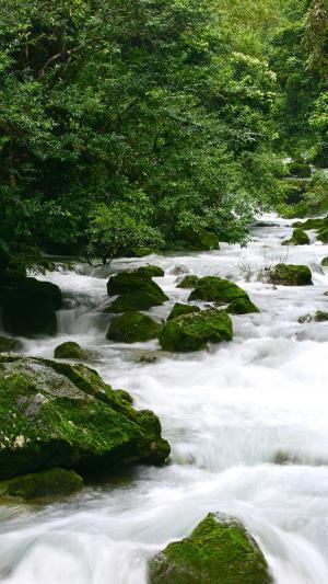 山间奔腾的溪流