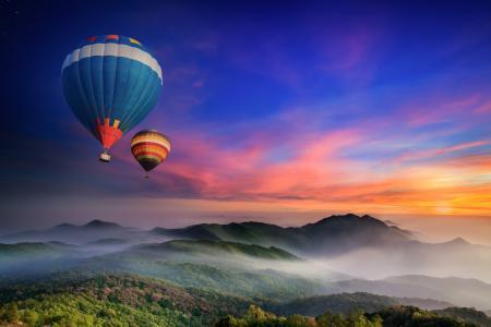 雾,森林,黎明,山,早上