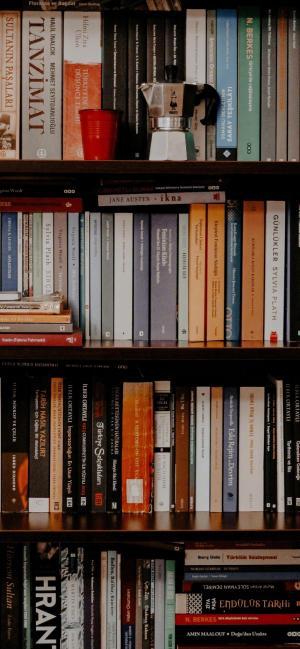 书架上陈列的书籍