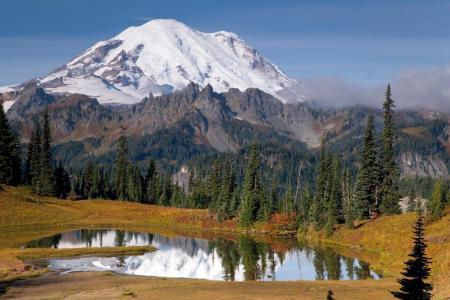 山,森林,湖,自然,景观