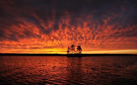 河,日落,小岛,三,松树