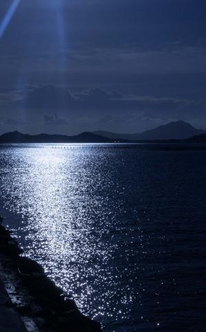 月色下的湖泊风光