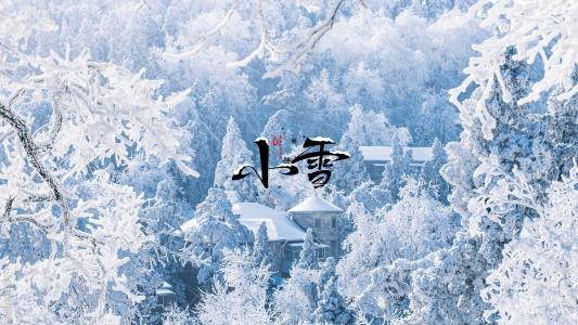 小雪时节雪纷飞