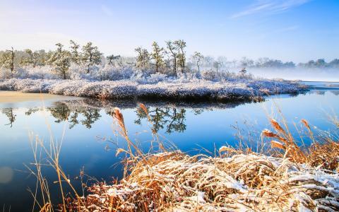 冬天,河,自然,景观