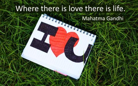 甘地,爱和生命,壁纸