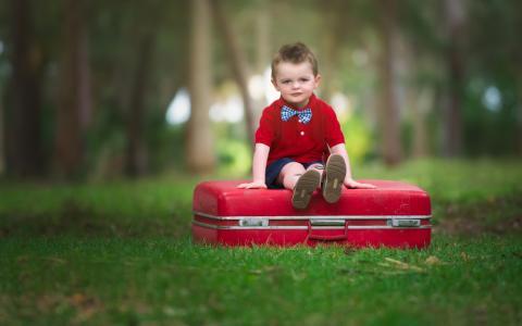 男孩,孩子,手提箱,坐,看,心情