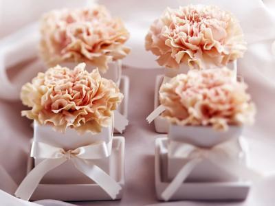 甜点,甜,花,板
