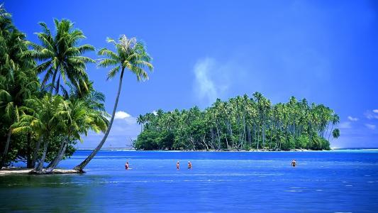 热带,岛,壁纸