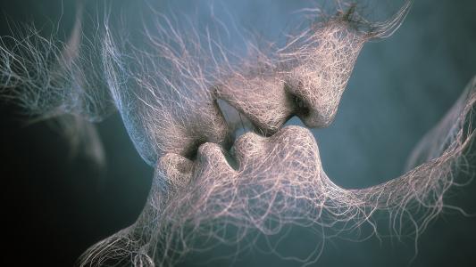 吻,丛,最后的吻,亚当马丁纳基斯,最后的吻