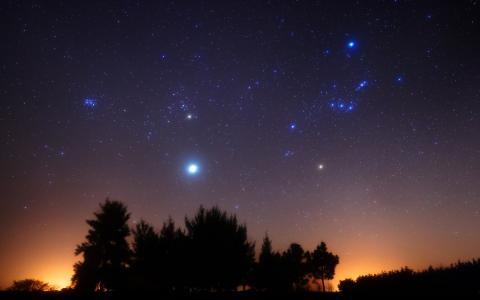 星空,夜晚,星座,猎户座,星星