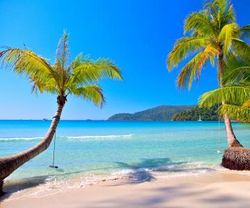 海滩,蓝色,海洋,棕榈,天堂,海岸,热带,翡翠,海