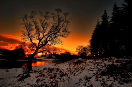 日落,河,雪,景观
