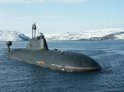 潜艇,潜艇,至154虎,雪,岸