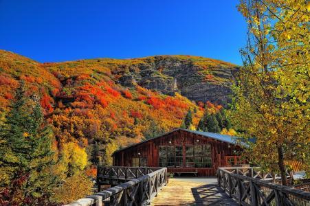秋天,山,树,桥,房子,景观