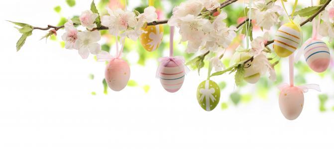 复活节,鸡蛋,krashenki,分支