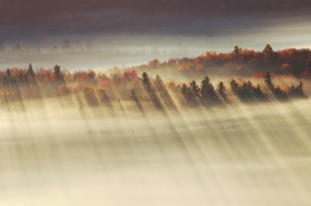 光,谷,光线,秋季,早上