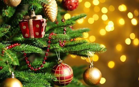 圣诞树,玩具,圣诞玩具,针,宏,散景,灯