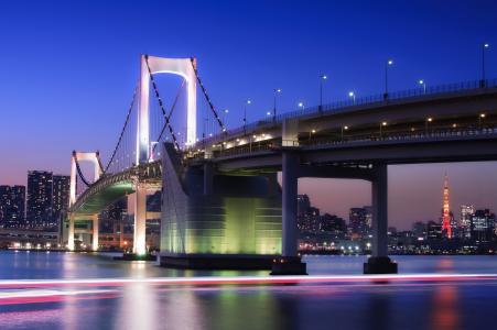 日本,东京,首都,日本,东京,首都,megapolis,桥梁,灯,照明,灯,曝光,海湾,房屋,建筑物,塔,夜,蓝色,天空