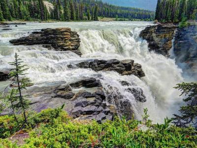 瀑布,树木,阿萨巴斯卡瀑布,贾斯珀,加拿大艾伯塔省,阿萨巴斯卡瀑布,贾斯珀国家公园,加拿大艾伯塔省