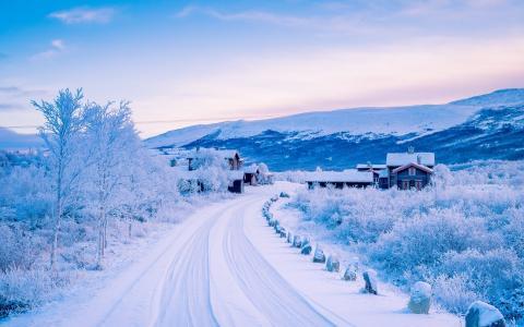 冬天,路,家