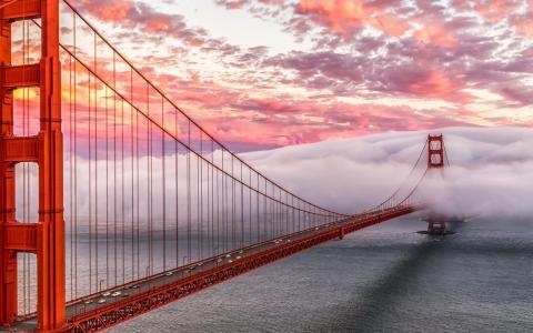旧金山,桥,金门
