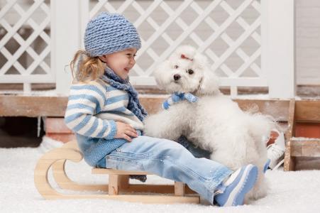 新年,假期,雪橇,女孩,狗,雪,喜悦