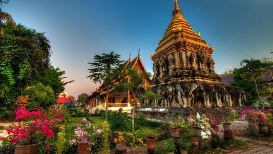 蒋曼,泰国,壁纸
