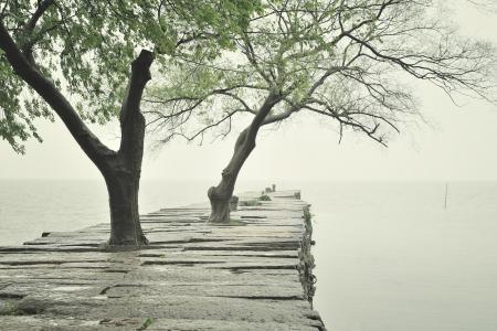 下雨天湖泊清新意境