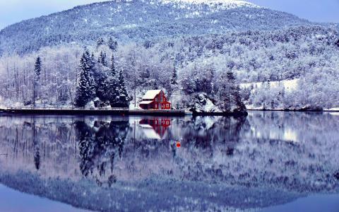 冬天,景观,湖泊