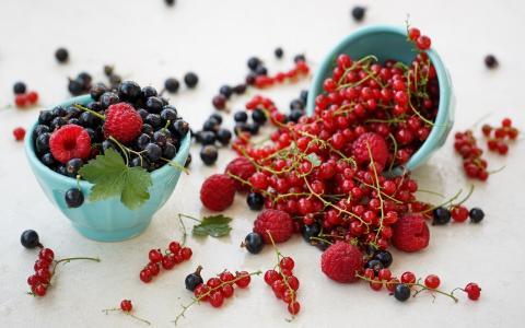 浆果,覆盆子,黑醋栗
