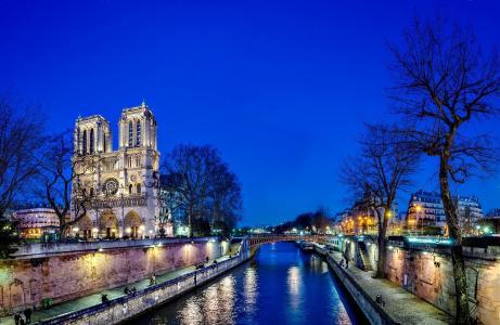 巴黎圣母院,法国,巴黎,巴黎圣母院,法国,巴黎,巴黎圣母院,城市,夜,树,桥,河,塞纳河,塞纳河,水,光,反思