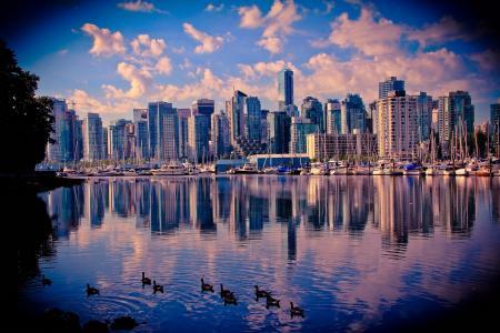 加拿大,海边,温哥华,城市