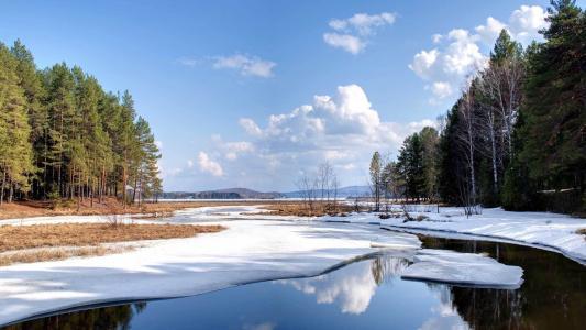 冬季,景观,河,森林,景观,自然,冬季
