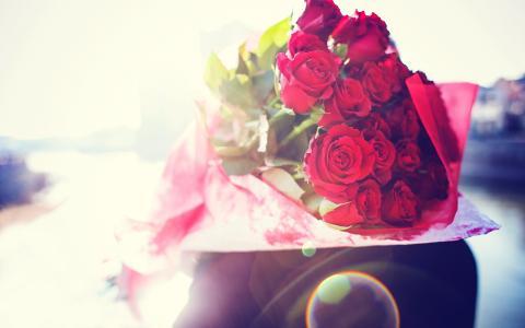花束,的,玫瑰,壁纸
