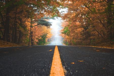 绵延悠长的公路