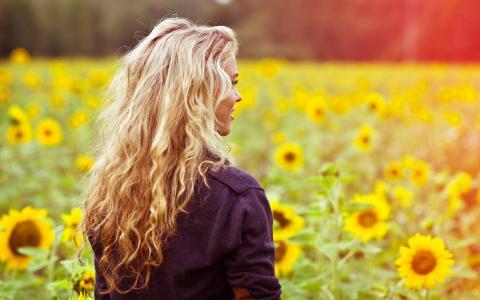 女孩,头发,微笑,领域,向日葵,鲜花,夏天,光,温暖,心情