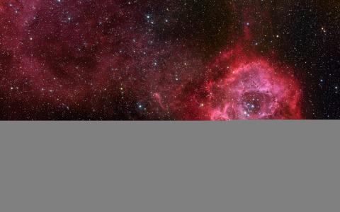 星云,玫瑰,太空,宇宙,星星