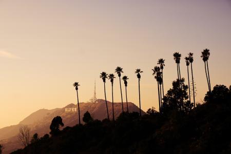 黄昏下的好莱坞山顶