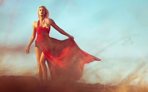 金发女郎穿着红色,模型,性质,女性,女孩